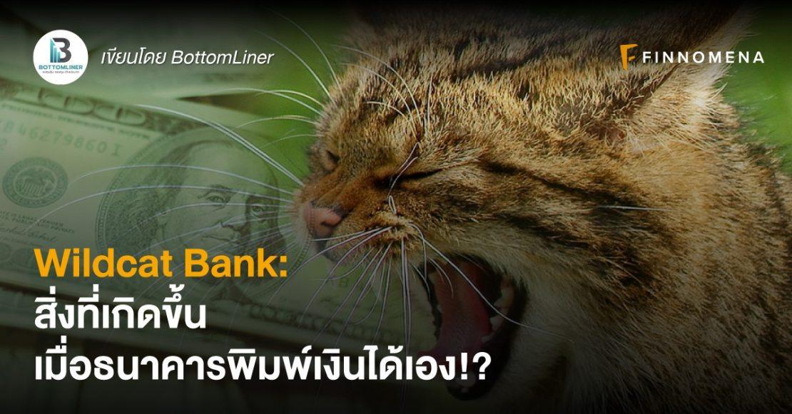 Wildcat Bank: สิ่งที่เกิดขึ้น เมื่อธนาคารพิมพ์เงินได้เอง!?